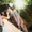 Видео- фотосъёмка, Фото и видео свадеб,  тамада,  фотограф,  видеооператор- свадьба  #254971