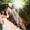 Видеооператор,  Фотограф- Видео и фото на свадьбу, утренник  #261560