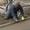 Штукатурка,  стяжка,  шпатлевка,  штукатурно-малярные работы в Пензе и области! #989932