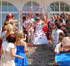Видеосъёмка свадеб,свадебная видео съёмка,видео и фото,на свадьбу - Изображение #4, Объявление #370268