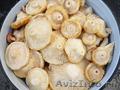 Солёные грибы груздь настоящий оптом