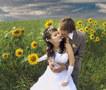 Утренник, свадьбу, выпускной, юбилей,фотограф-видеооператор(видеограф) - Изображение #3, Объявление #1667905